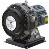 ISP 1000 Anest Iwata Oil Free Vacuum Pumps