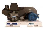 Anest Iwata OFB Oil Free Compressor
